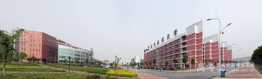湖南中医药大学  校园一角