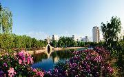 青岛农业大学           虹子湖畔风光