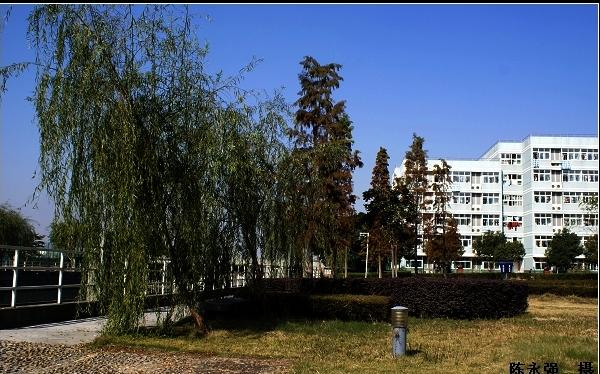 温州瓯海中学校园风景 温州瓯海中学排名,风景,地址图片